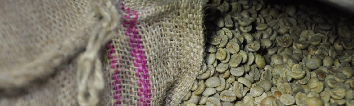 Quali sono i caffè più cari al mondo? Ecco  i primi due